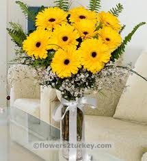 12 Yellow gerberas vase