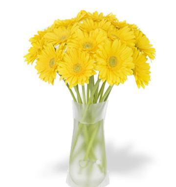 36 Yellow gerberas vase
