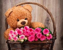 20 pink roses with 1 foot teddy bear arranged in a basket