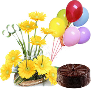 Gerberas Bouquet With 2 Pound Chocolate Cake And 3 Air Filled Balloons